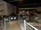 Muzeum Broni Pancernej Praga-Leszany