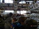 W fabryce bombek 2 XII 2013r.