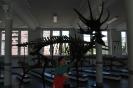 W Muzeum Przyrodniczym